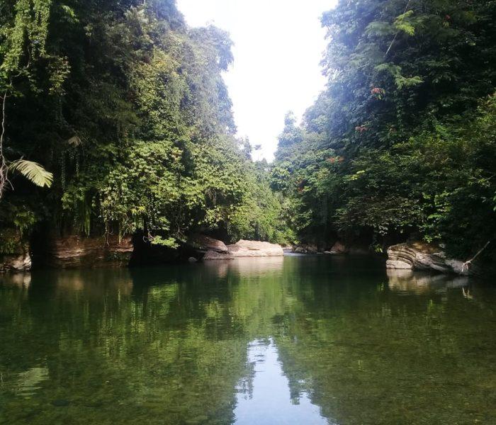 Tangkahan, Sumatra- pravi skriveni raj