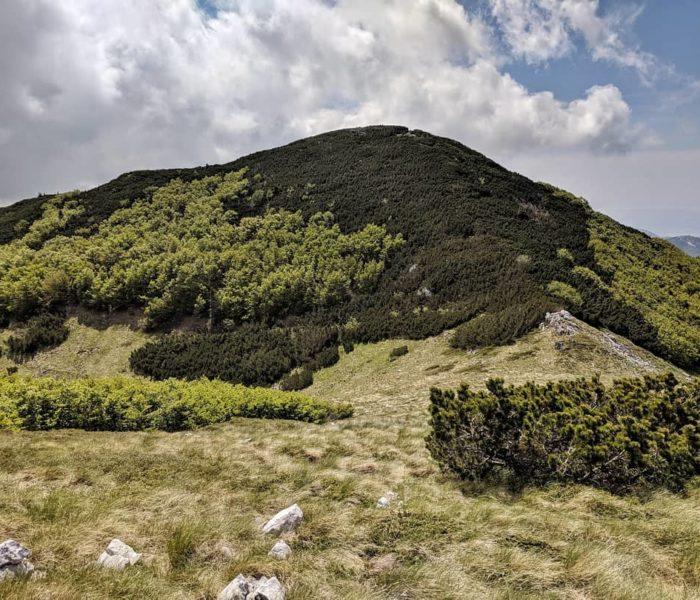 Upisati planinarsku školu –  da ili ne?