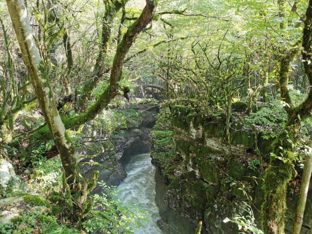 Martvili kanjon