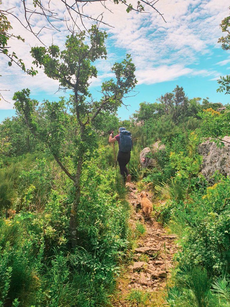 kozjak_planinarenje