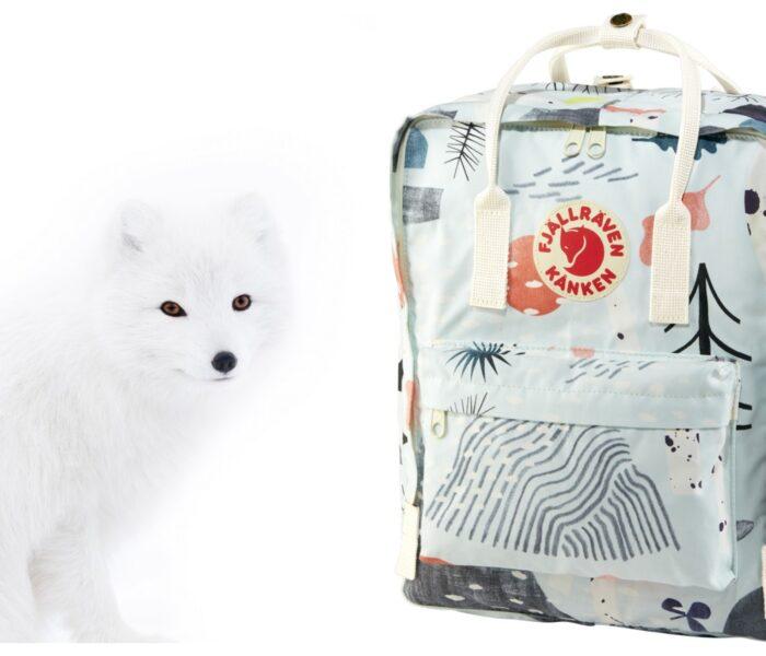 Ajmo malo zastati i diviti se ovoj slatkoj polarnoj lisici. I, naravno, novom ruksaku Kanken Art