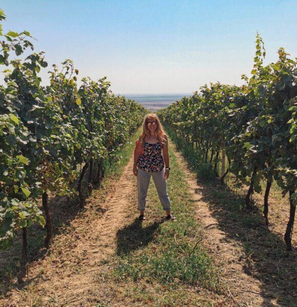 Čisti hedonizam: Provedi vikend ispijajući vino na vinskoj turi Kutjevo & Baranja