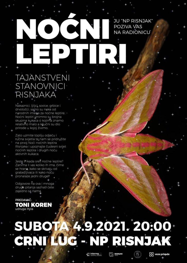 nocni_leptir_risnjak